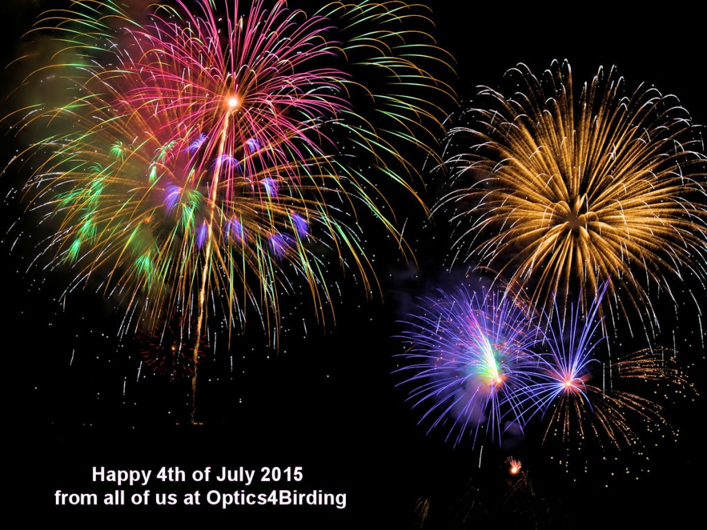 4th of July 2015 fireworks in Southern California
