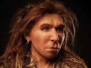 Sapiens genetic material discovered in Neanderthal bones