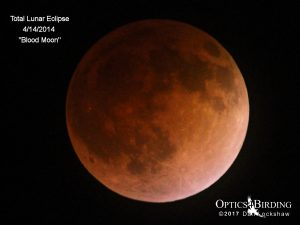 Blood Moon 4-2014